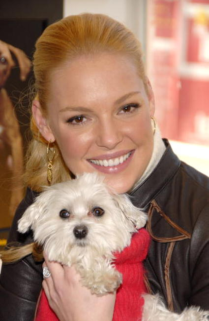 Katherine Heigl at the third Annual Pedigree Adoption Drive in N.Y.