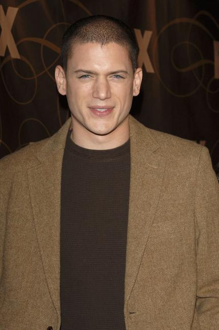 Wentworth Miller at the Fox Winter TCA party.
