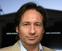 David Duchovny at the Los Angeles premiere of