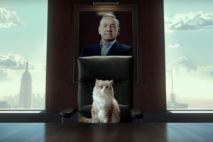 Watch Kevin Spacey As a Cat in 'Nine Lives' Trailer