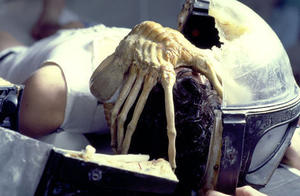 "A scene from ""Alien: The Director's Cut."""