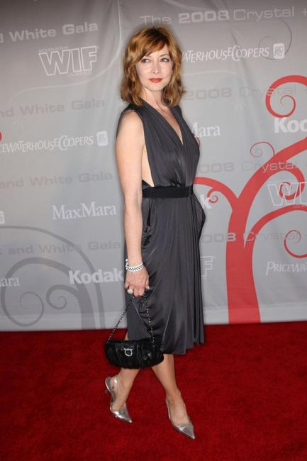 Sharon Lawrence at the Women In Film's 2008 Crystal Lucy Awards.