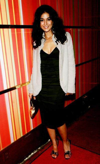 Emmanuelle Chriqui at the premiere after party of
