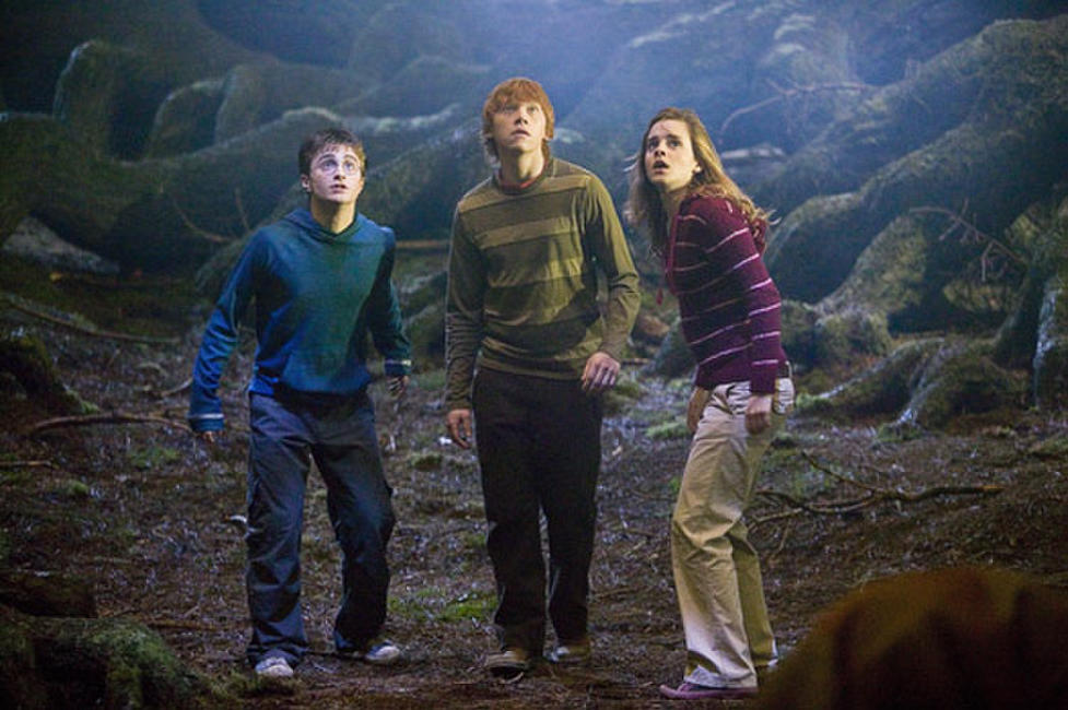 Daniel Radcliffe, Rupert Grint and Emma Watson in
