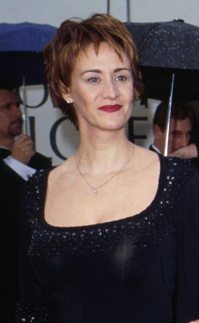 Janet McTeer at the 57th Annual Golden Globes Awards.
