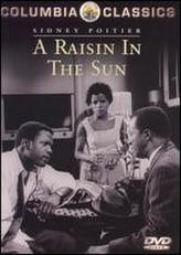 A Raisin in the Sun showtimes and tickets