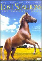 Lost Stallions showtimes and tickets