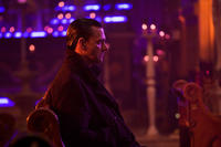 Ray Stevenson as Frank Castle in