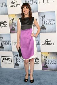 Rosemarie DeWitt at the 24th Annual Film Independent's Spirit Awards.