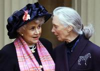 Joan Plowright and Jane Goodall at the world's foremost authority on chimpanzees, after they both made Dames by the Prince Of Wales at Buckingham Palace in London.