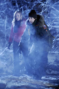 Sarah Polley and Adrien Brody in