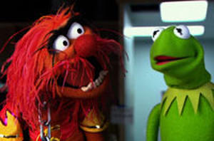 All the Celebs Who Appear in the Teaser Trailer for 'Muppets Most Wanted'