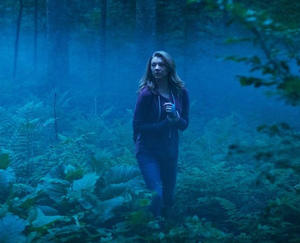 Check out all the movie photos of 'The Forest'