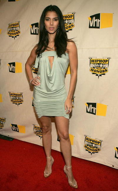 Roselyn Sanchez at the VH1 Hip Hop Honors.