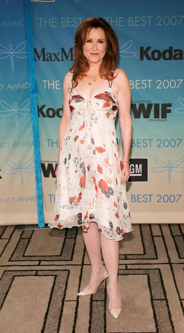 Mary McDonnell at the Women In Film 2007 Crystal and Lucy Awards.