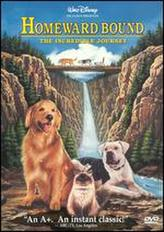 Homeward Bound: The Incredible Journey showtimes and tickets