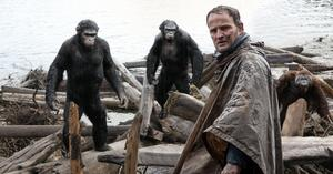 Watch: A Real 'Planet of the Apes' Actually Exists
