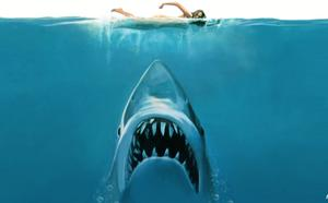 11 Things You Probably Didn't Know About 'Jaws'