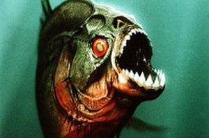 Which Celebrity Would You Like to See Killed in 'Piranha 3D' Sequel?