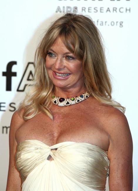 Goldie Hawn at the American Foundation for AIDS Research'Cinema Against AIDS 2007' annual event at Le Moulin de Mougins during the 60th edition of the International Cannes Film Festival.