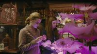 Emma Watson as Hermione Granger and Bonnie Wright as Ginny Weasley in