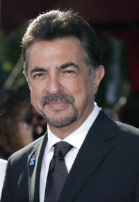 Joe Mantegna at the 59th Annual Primetime Emmy Awards.