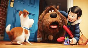 What Parents Can Expect from 'Secret Life of Pets'