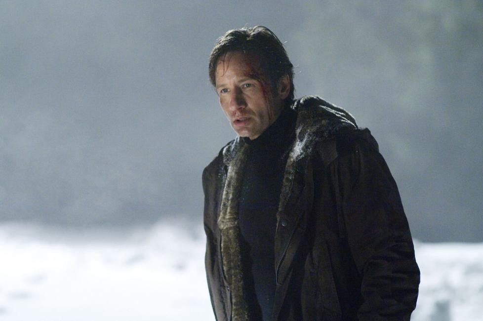 David Duchovny as Fox Mulder in