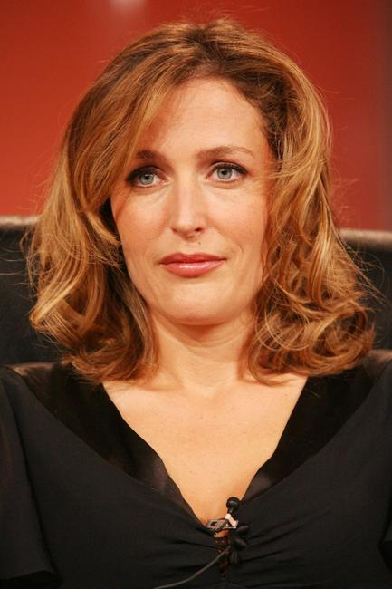 Gillian Anderson at the PBS segment of the Television Critics Association Winter Press Tour panel discussion.