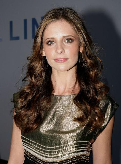 Sarah Michelle Gellar at the 2007/8 Chanel Cruise Show.