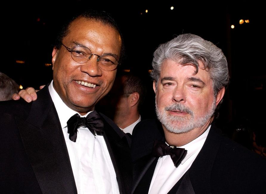 Billy Dee Williams at the 33rd AFI Life Achievement Award.