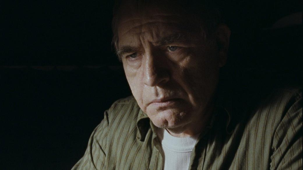 Brian Cox as Frank Perry in