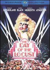 The Day of the Locust showtimes and tickets