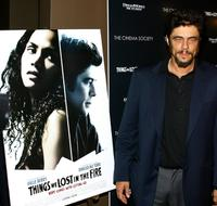 Benicio Del Toro and at the premiere of