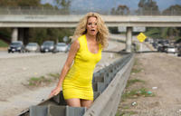 Elizabeth Banks as Meghan Miles in