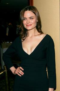Emily Deschanel at the American Society of Cinematographers Achievement Awards.