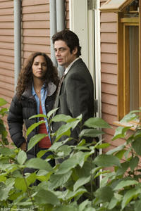 Halle Berry and Benicio Del Toro in