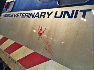 News Bites: See a Bloody 'Jurassic World' Photo