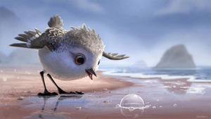 Watch the First Stunning Footage from Pixar's New Short 'Piper'