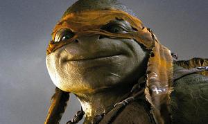 Quiz: Which Teenage Mutant Ninja Turtle Are You?