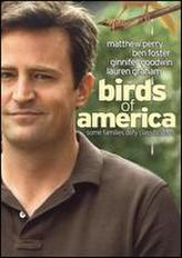 Birds of America (2008) showtimes and tickets