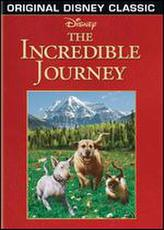 The Incredible Journey showtimes and tickets
