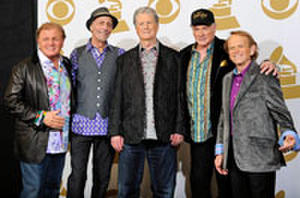 A Beach Boys Musical? From 'The Vow' Director?