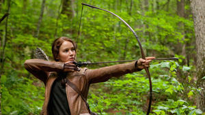 If You Like 'The Hunger Games,' Try…
