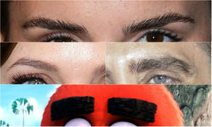 Whose Eyebrows Are These?