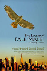The Legend of Pale Male showtimes and tickets