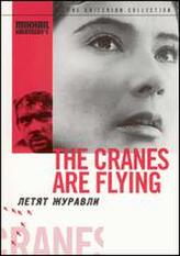 The Cranes Are Flying showtimes and tickets