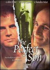 The Perfect Son showtimes and tickets