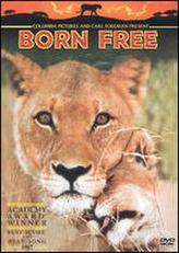 Born Free showtimes and tickets
