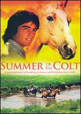 Summer of the Colt showtimes and tickets